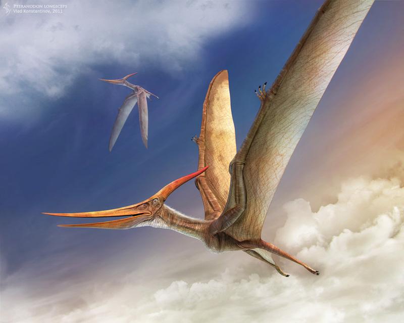 Flying Pteranodon
