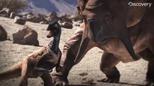 Eoraptor Dinosaur Revolution 1