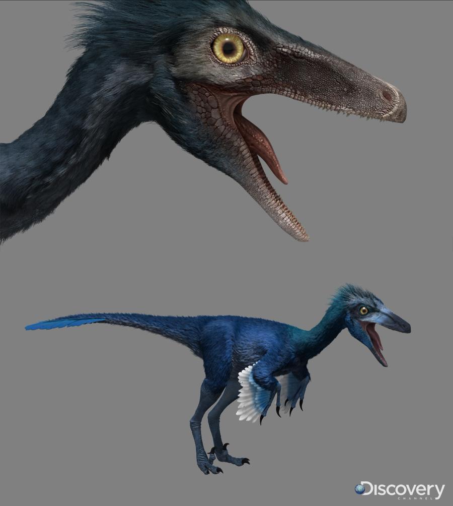 Troodon Dinosaur Revolution