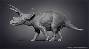 Museum Triceratops