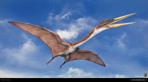 Quetzalcoatlus. The Stomping Land. 01