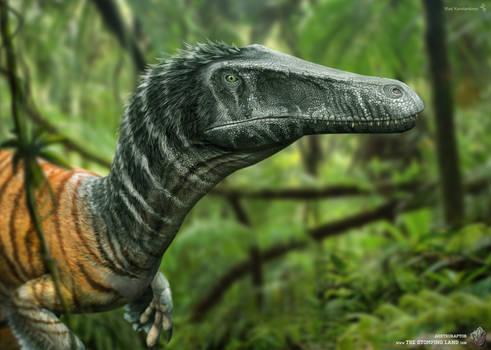 Austroraptor. The Stomping Land. 03