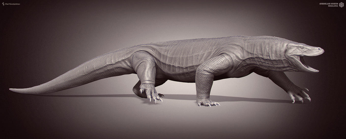 Megalania. Queensland Museum. by Swordlord3d