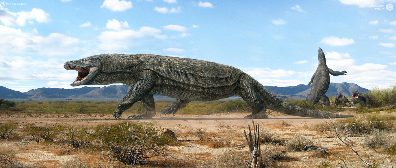 Megalania by Swordlord3d