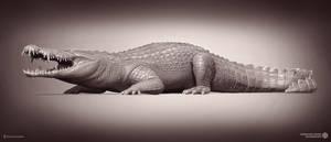 Pallimnarchus. Queensland Museum.