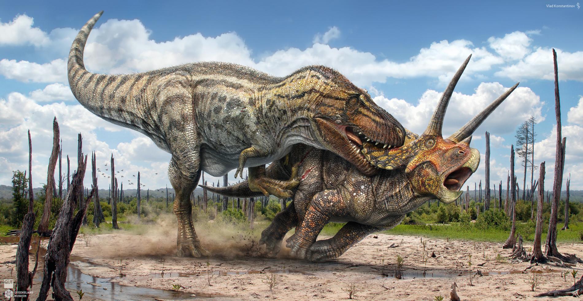 PDBS2F6: Tyrannosaurus rex Vs. Triceratops prorsus ...