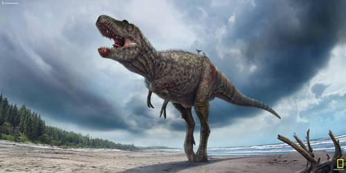 Gorgosaurus. by Swordlord3d