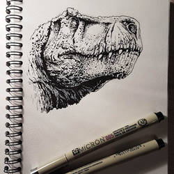 T.rex, black pen sketch 1