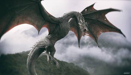 Dragon. Rufus. v1