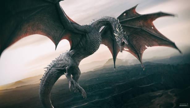 Dragon. Rufus. v2