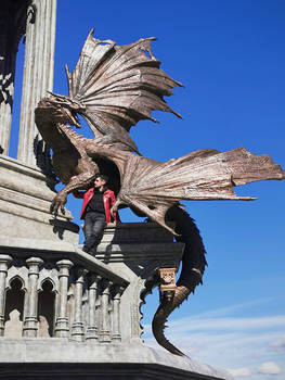 Garibaldi Castle Dragons 03