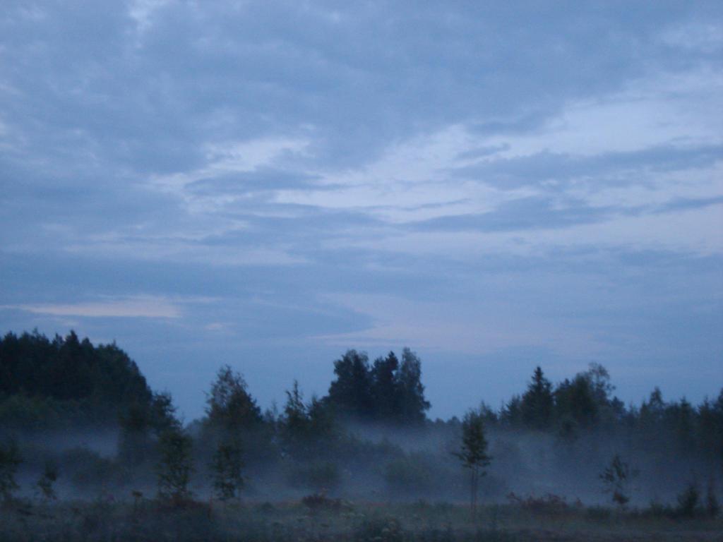 misty fields 2 by FinnRock