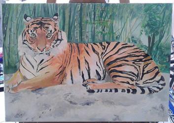 Tigre al oleo