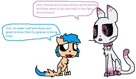 (RQ) Meeting fact cat by Jaziziplz