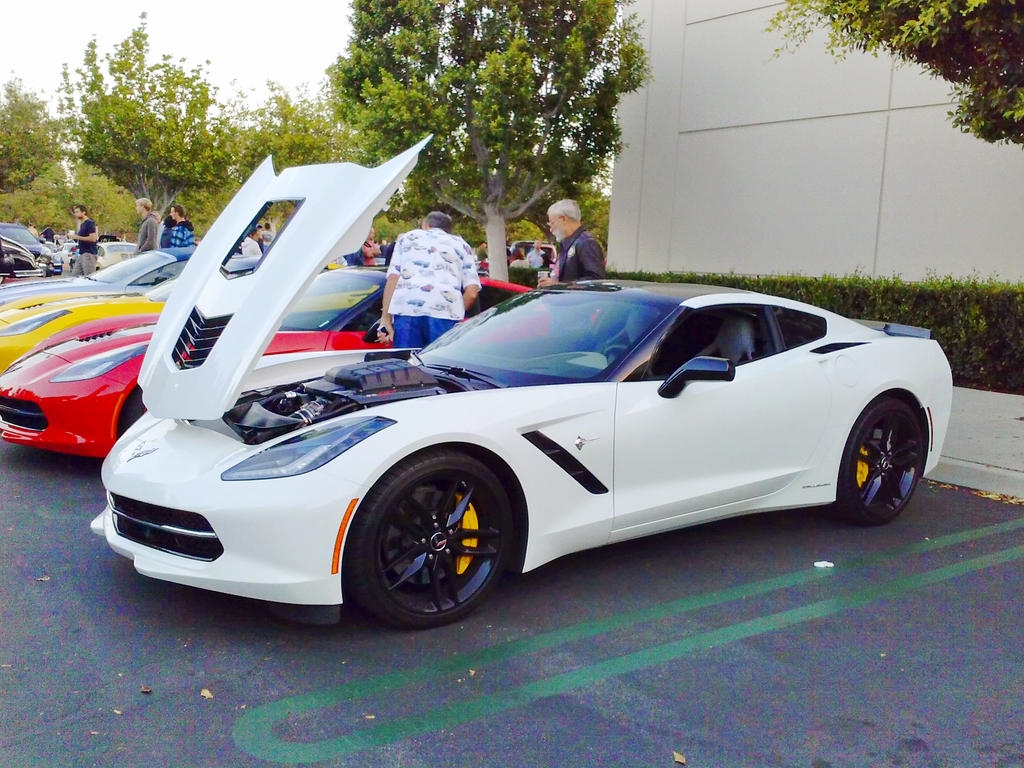 Callaway Vette by mburleigh8