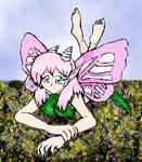 Fairy feilds