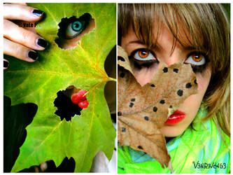 the eYes of the AutuMn by V3Nr3VeNG3