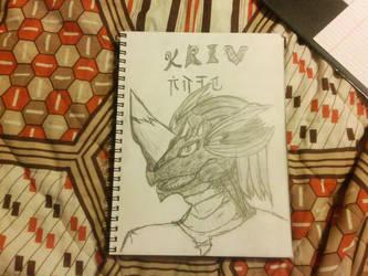 Kriv Yarjerit the Dragonborn by chazpepper