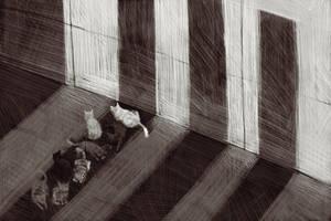 Suspicious shadow by EvgenVHV