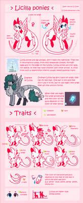 Licilla ponies (semi-open race)