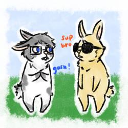 dave and john: be bunnies