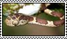 Bluntheaded tree snake stamp by Revska