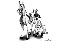Lyra Dressage