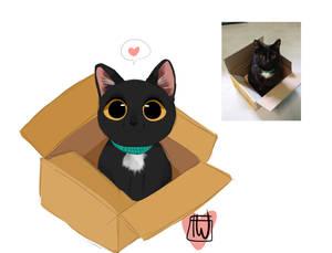 Sirb Box commission chibi