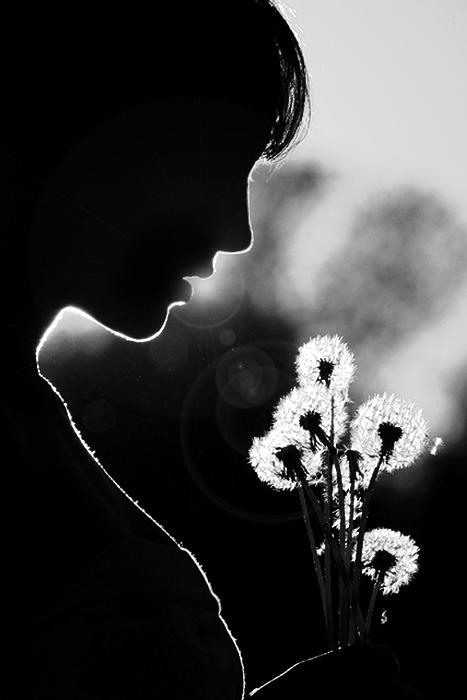 -dandelion- by tynaS
