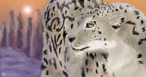 Snow Leopard by neecolette