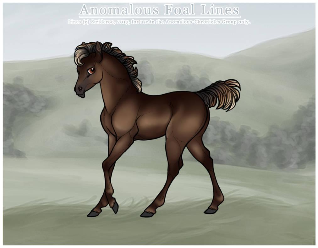 Foal Design | Nexus by strideroo on DeviantArt