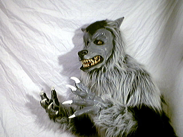 Werewolf - halloween costume by maskedpup