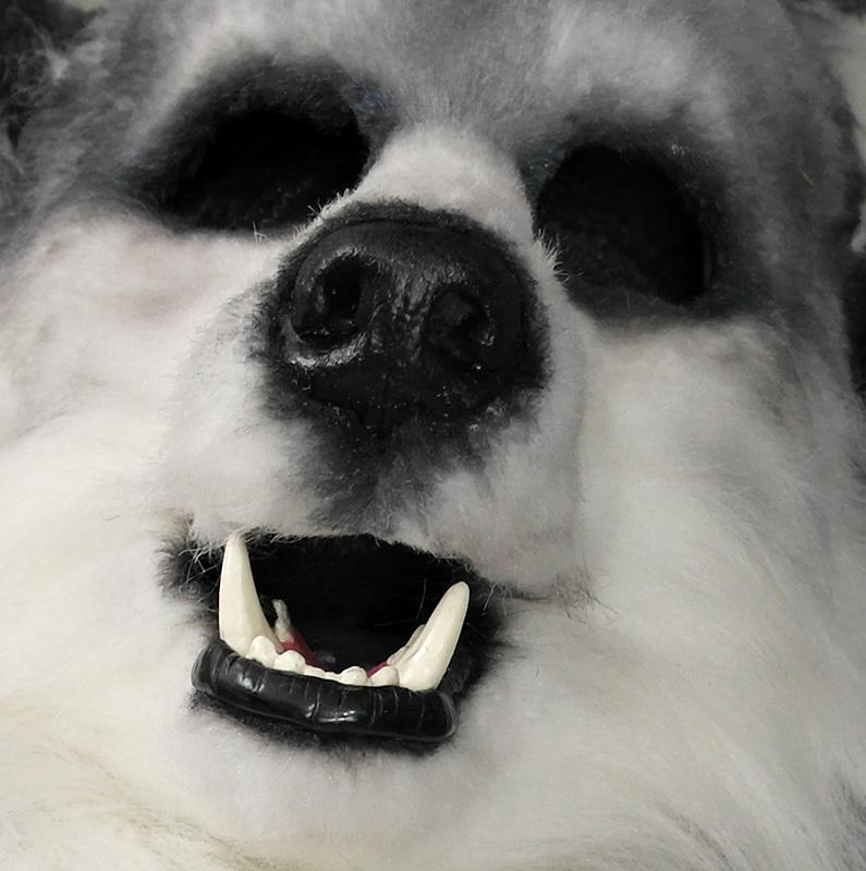 Puppy's empty face by maskedpup