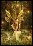 The Fairies Vale