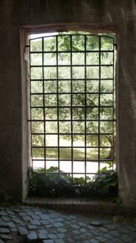 Window 01