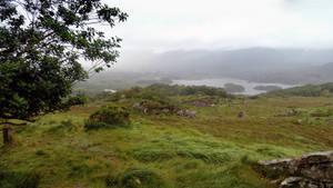 Scotland 47