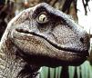Jurassic Park-Velociraptor (F) [The Big One] V.1 by Asuma17