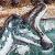 Brian-Franczk-Lambeosaurus (F) [V.3] by Asuma17