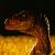 Jurassic Park - Velociraptor (M) [Clarence] [V.1]