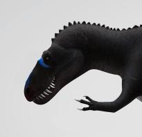 Ceratosaurus *No Horn* by Asuma17