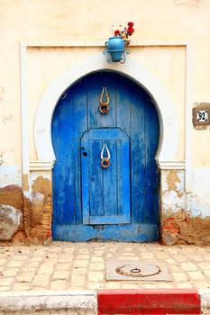 Tunisian Doors 1