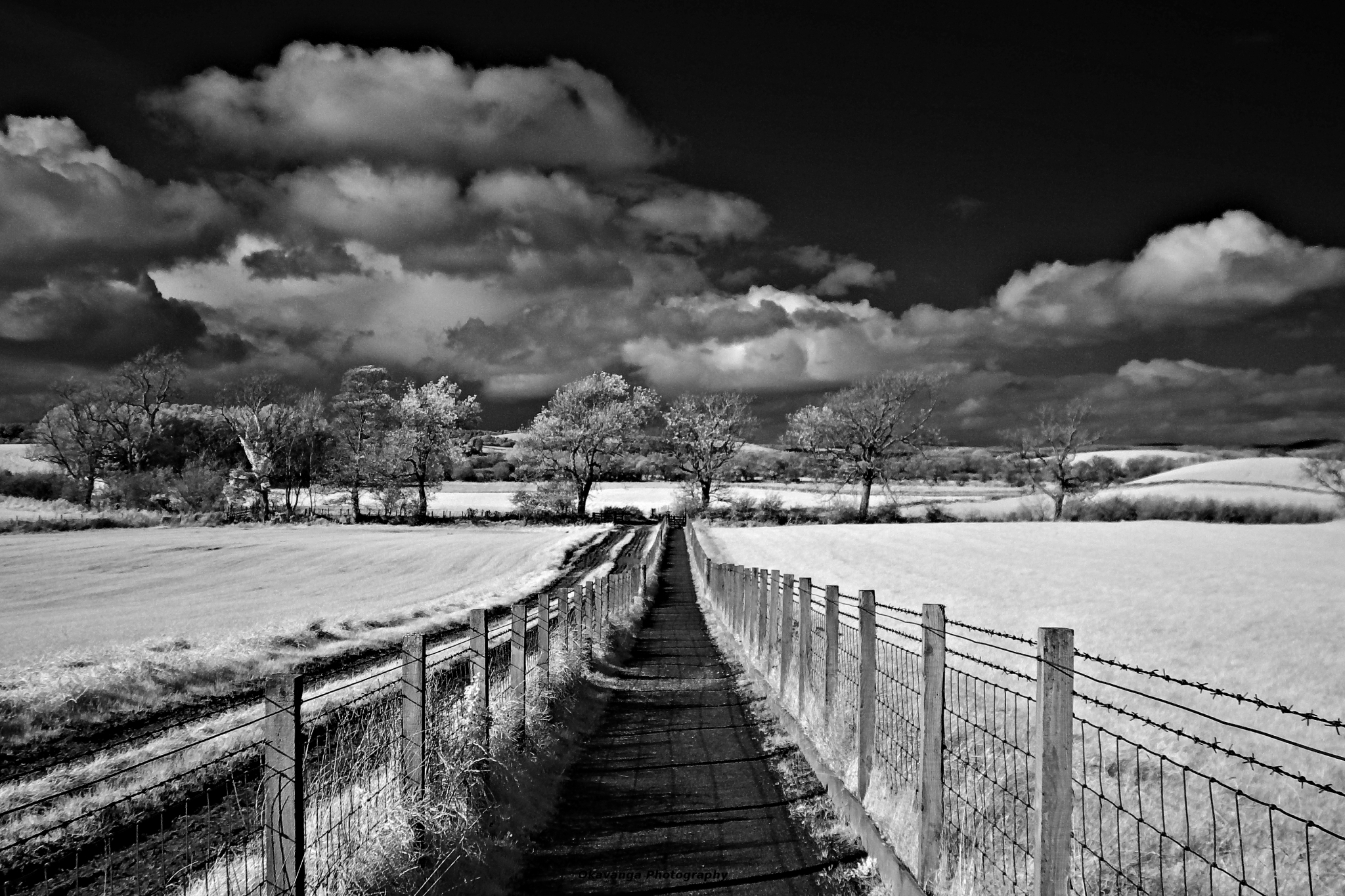 Threave IR 1 by Okavanga