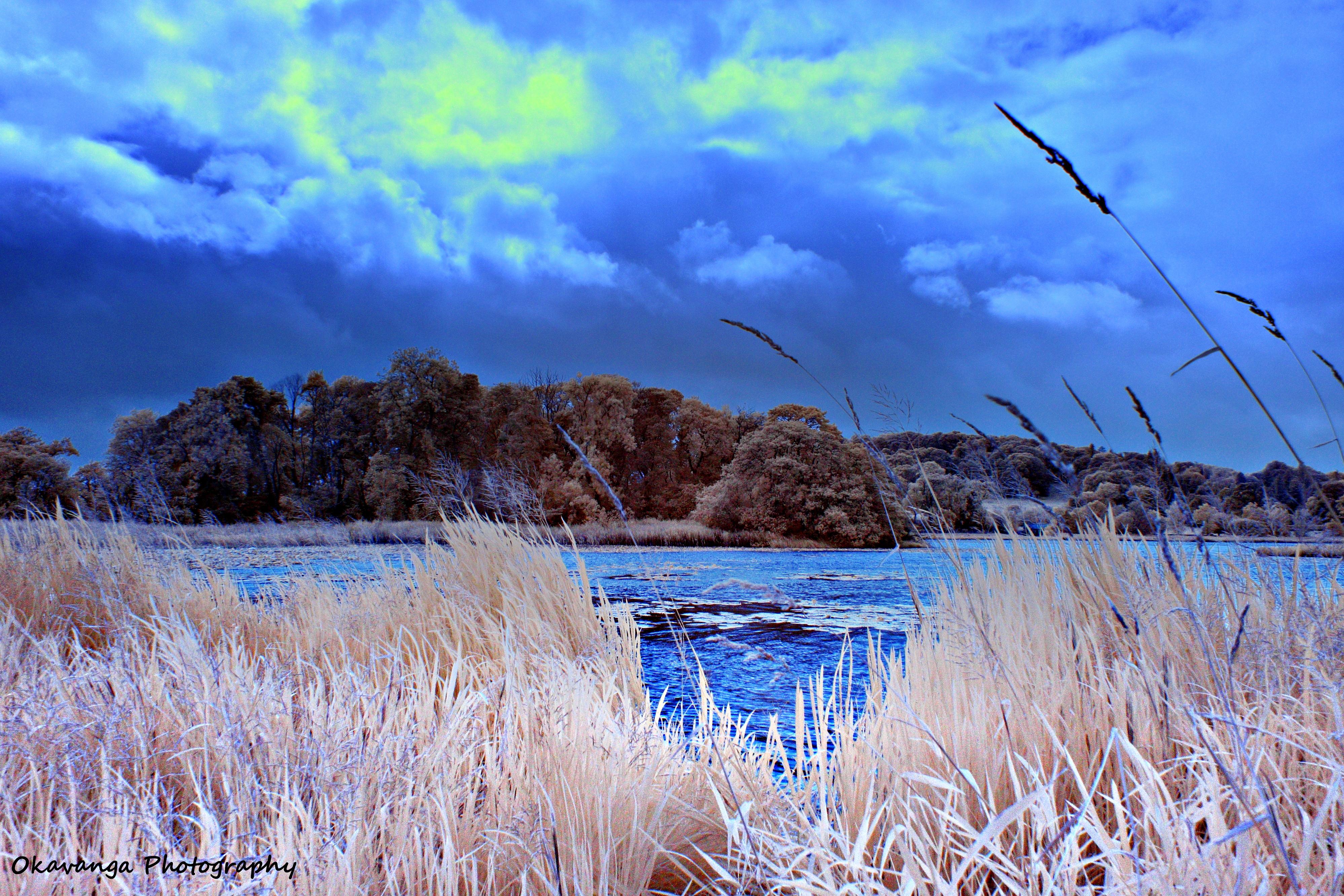 Extra-Visible Galloway - Carlingwark Loch Swap by Okavanga