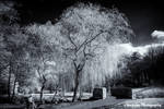 Some Infrared Reflections 1