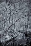 Some Infrared Reflections 2