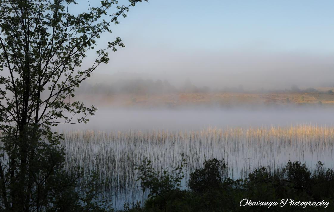 Stroan Loch Early Morning Mist 1 by Okavanga
