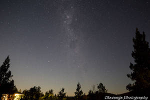 Starry Night 1 by Okavanga