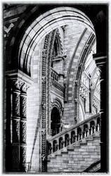 Escheresque 3