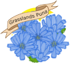 grasslands_puna_by_idlewildly-db2hd6x.png