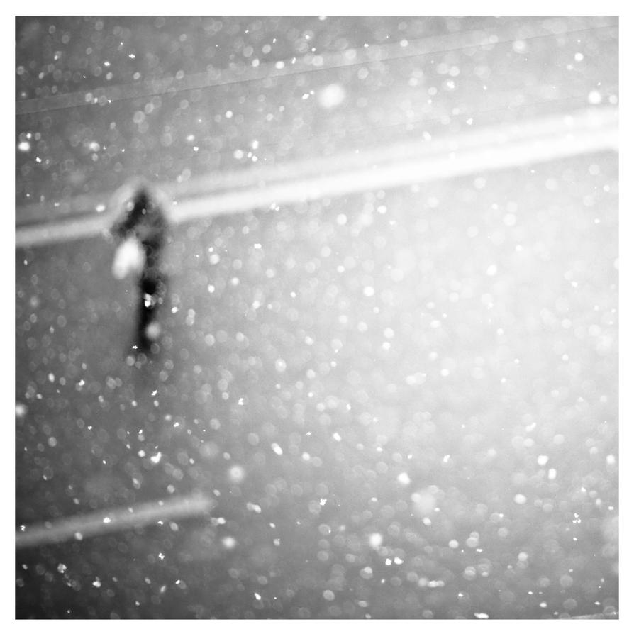'snowshow' by photofreak07